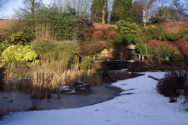 Snow garden by dante-kimachi