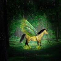 Firefly by KaitlyNicole