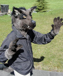 Partial Fursuit by Psydrache
