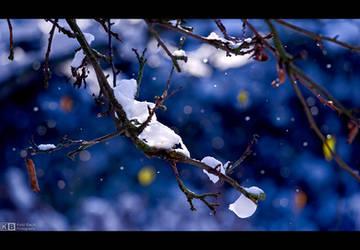Autumn Coldness by KeldBach