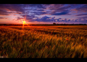 Sunset at the Countryside by KeldBach
