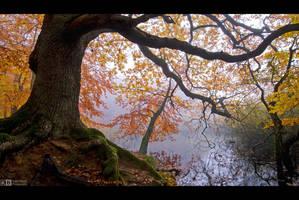 Guardian of the Creek by KeldBach