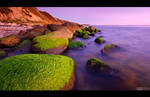 Mossy Rocks at the Beach by KeldBach