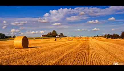 Rolls of Straw by KeldBach