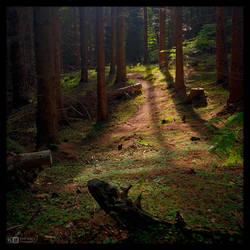 Just Follow the Light by KeldBach