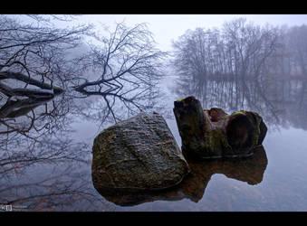Rock and Stump by KeldBach
