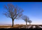 Winter Mood by KeldBach