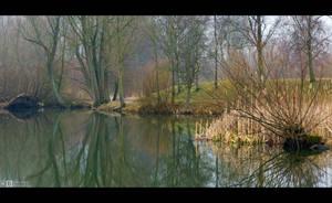 Misty Morning in the Park by KeldBach