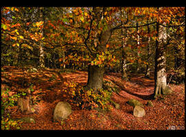 Happy Fall by KeldBach