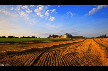 Harvest Time by KeldBach