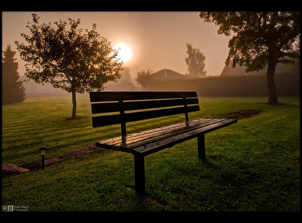 Foggy Sunrise by KeldBach