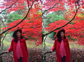 Ruby Angel Of The Red Maple In Stereoscopic 3-D by aegiandyad