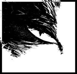 Cat's-Eye by UomoAnalogico