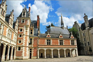Chateau de Blois 2 by ShlomitMessica