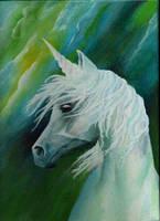 unicorn by AlaPol