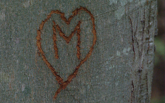 Somebody loves M -unmixed- by revnk