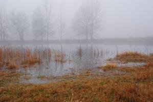 Fog 26 by lumibear