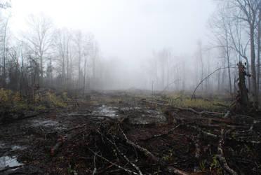 Fog 70 by lumibear