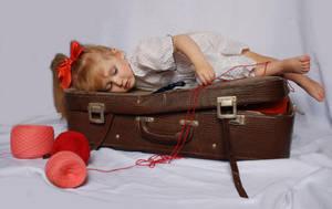 The suitcase_11 by anastasiya-landa