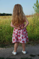The Summer_40 by anastasiya-landa
