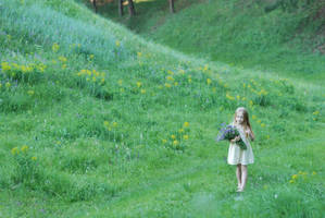 On flowered field 1 by anastasiya-landa