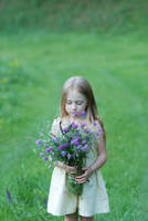 On flowered field 7 by anastasiya-landa