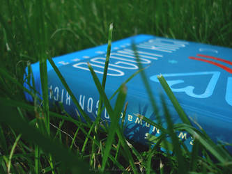 Reading on the grass by olgasha