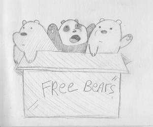 Free bears by mediocrart