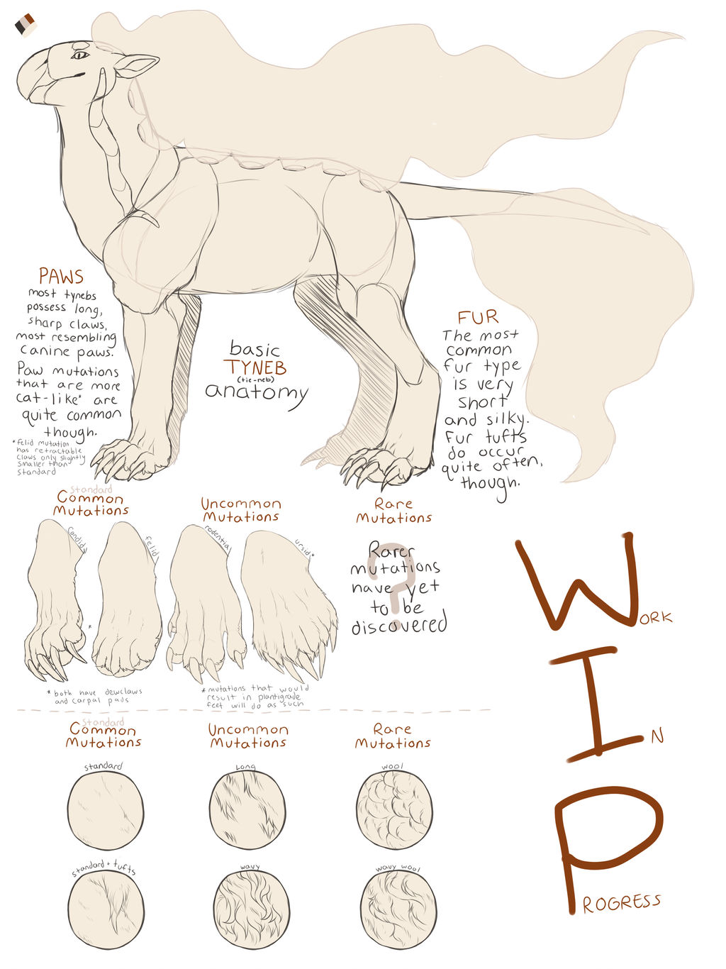 Basic Tyneb Anatomy By Mute Owl On Deviantart