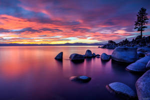 East Shore Tahoe Evening Splendor by sellsworth
