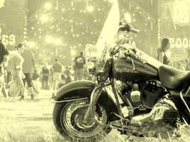 Woodstock 5 by chtalik