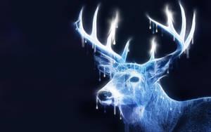 -- Light deer -- by 0l-Fox-l0