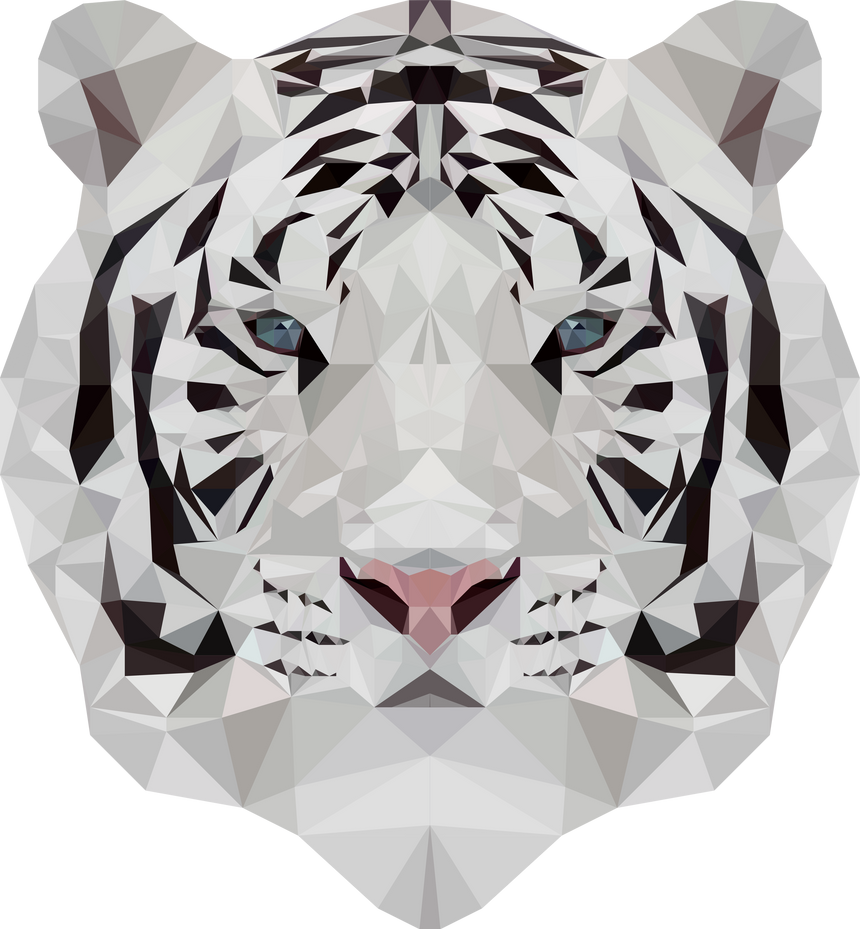 -- White tiger -- by 0l-Fox-l0