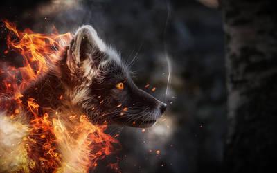 -- Dust -- by 0l-Fox-l0