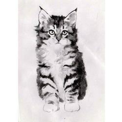 kitten by icagic