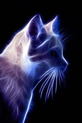 Fire Cat 3 by TazPoltorak