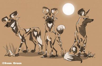 African Wild Dogs by greenbarbarian