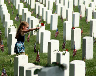 Placing a rose on a soldier's grave by LovingInTheLongGrass