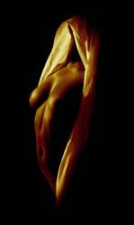 golden nu...... by YuriBonder