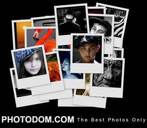 Photodom by YuriBonder