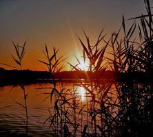 A beautiful sunset by dangerous-love