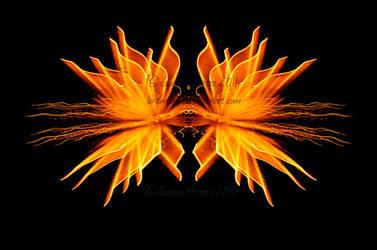 Fireworks Series by lordmagnusvo