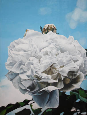White flower WIP by bcarroll