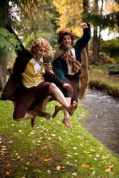 To the Shire! :LOTR by Satsori