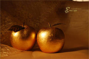 golden apple by shams-photo
