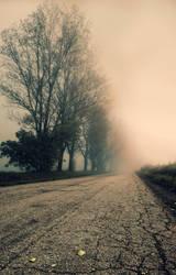enshrouded in fog by Nikoletta-Kolozs