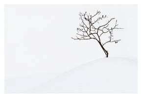 Minimalism no.2 by Westerberg