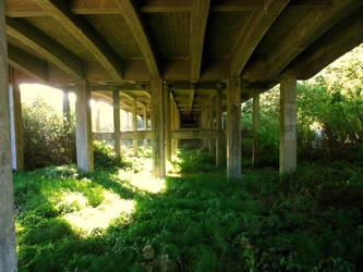 Unseen Path by Azulcat