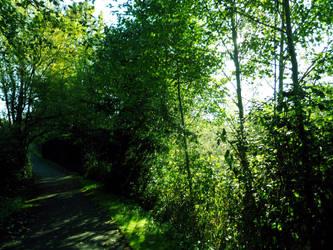 Pathway by Azulcat