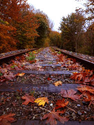 Tracks in Fall Colors by Azulcat